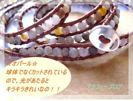 chan 006-1.JPG