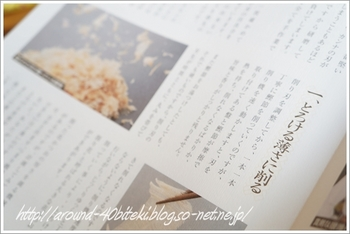 mango 034-1.JPG