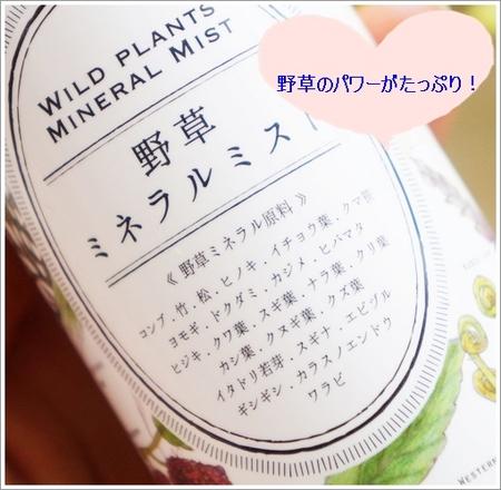 noyama 236-99.JPG