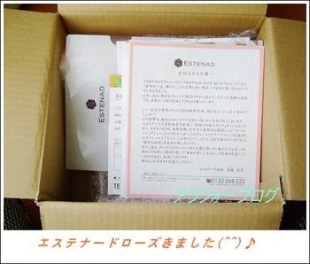 rose 002-99.JPG