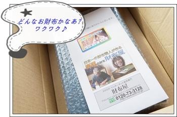 saifu 004-1.JPG