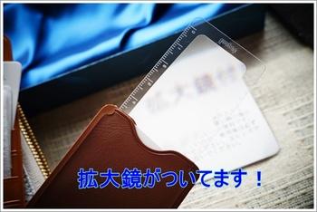 saifu 032-1.JPG
