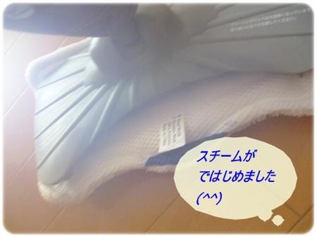 shark 049-1.JPG
